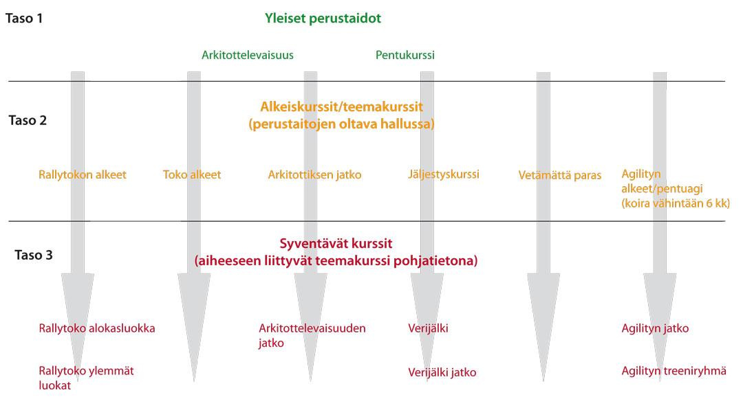 kiveko_kurssikartta_sivuille_ilmanotsikko